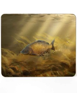 Table Mat (Common Carp) Personalised Gift