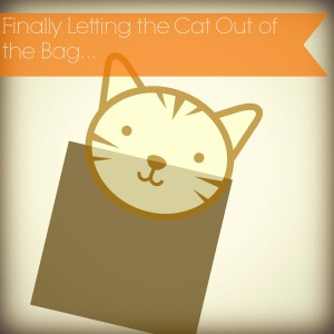 Letting the Cat out of the Bag. A Big Change is Coming…