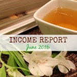 Blog Income Report – June 2016