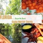 Florida-Beyond the Beach