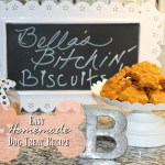 Bella's Bitchin' Biscuits – Easy Homemade Dog Treat Recipe!