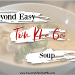 Alpha-gal Safe Tom Kha Gai Soup