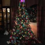 A few more Christmas videos from Dylan Scott, American Young and Jackson Michelson