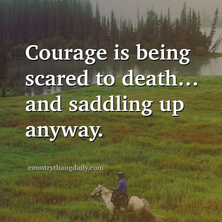 John Wayne Quotes - Courage is being scared to death and saddling up anyway