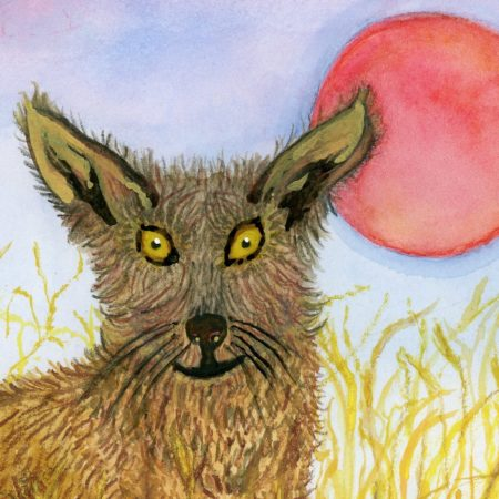painting close up coyote in grass