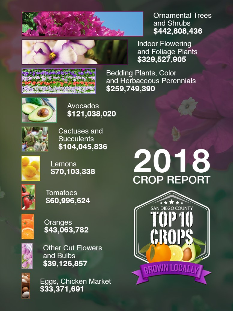 2018 County of San Diego Crop Report Graph