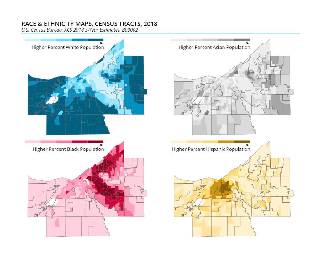 Race and ethnicity maps