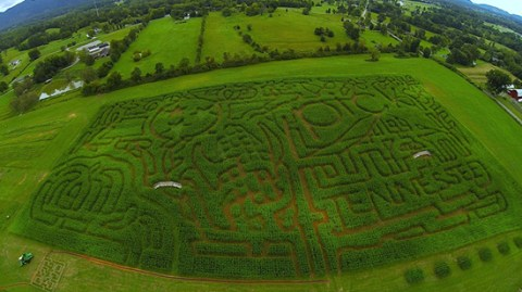 Arial shot of Oakes Farms - Corn Maze 2014