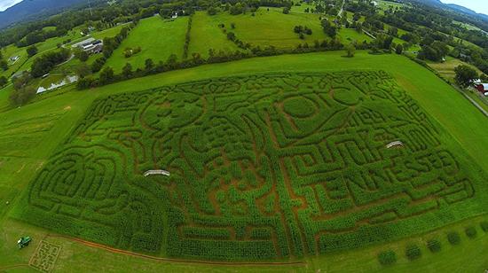 Arial shot of Oakes Farms - Corn Maze 2014