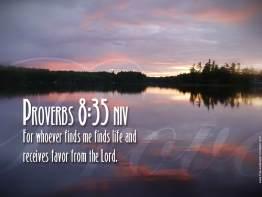Proverbs 8:35