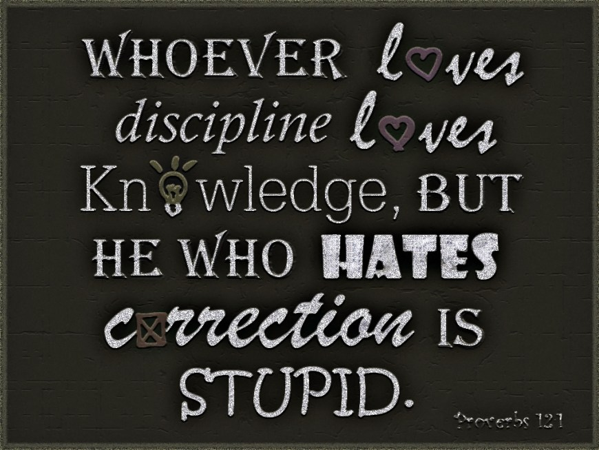Proverbs 12:1 - Whoever loves discipline loves knowledge, but he who hates correction is stupid.