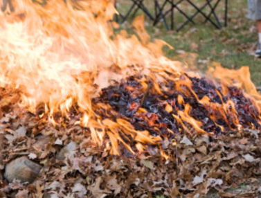 Debris Burning image