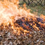 Debris Burning image