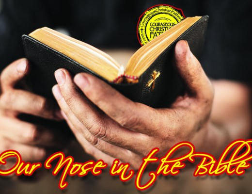 Our Nose in the Bible