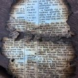 Burned Bible Page found at Dollywood from the Wildfires