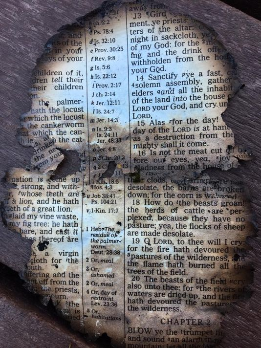 Burnt Bible Page Found at Dollywood from the Wildfires   Joel 1:13-20   Photo credit: Isaac McCord)