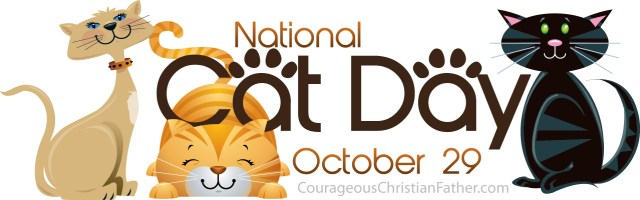 National Cat Day #CatDay #NationalCatDay