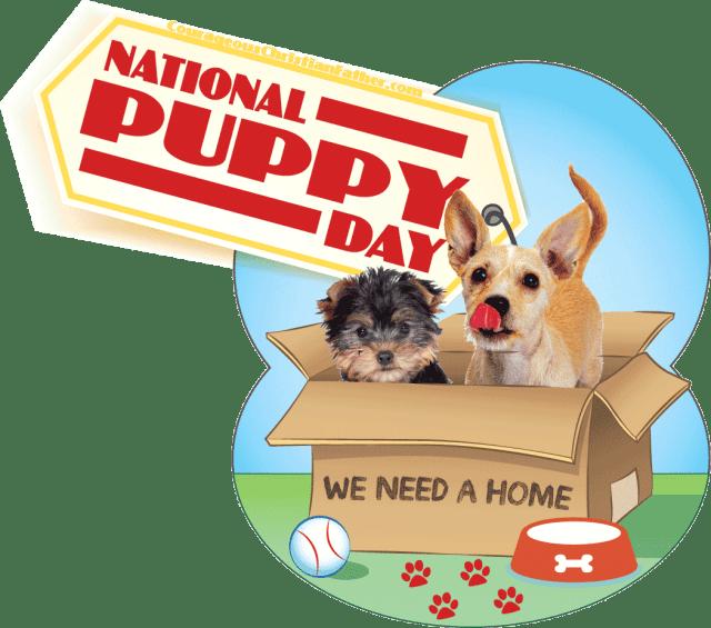 National Puppy Day #NationalPuppyDay