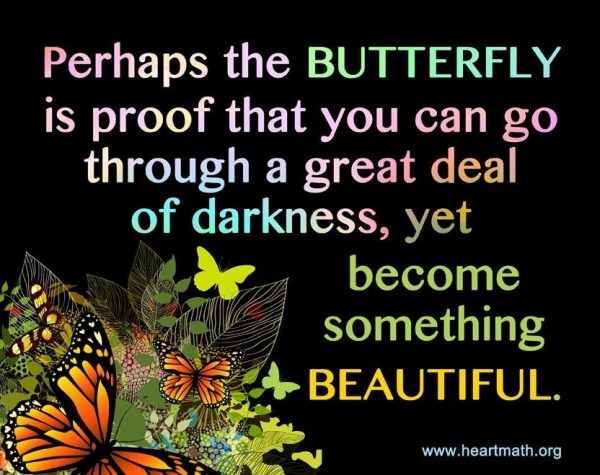 New Creation: Beautiful butterfly - Perhaps the BUTTERFLY is proof that you can go through a great deal of darkness, yet become something BEAUTIFUL. (Heartmath)