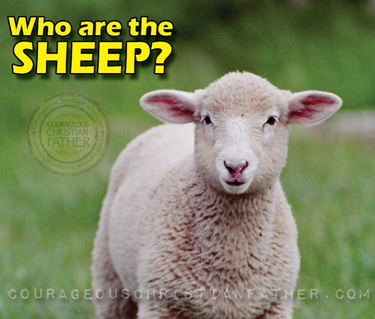 Who are the Sheep?
