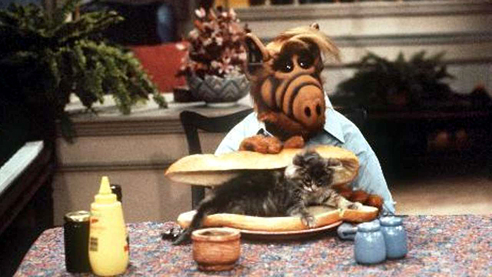 Cats least favorite show is Alf - Alf trying to eat a cat sandwich.