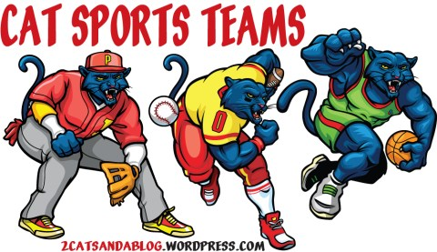 Cat Sport Teams (Feline Sport Teams)