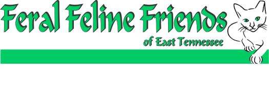 feralfelinefriends-easttn-2843604