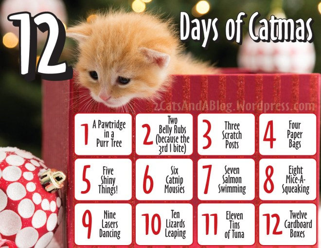 12 Days of CatMas