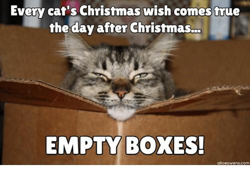 empty-boxes-9517333