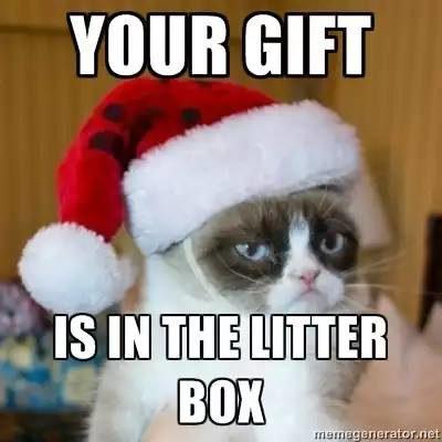 litter-box-3604933