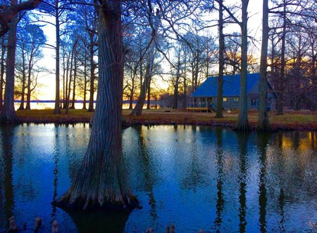 Cabin at Reelfoot Lake State Park   Tennessee State Parks Photo