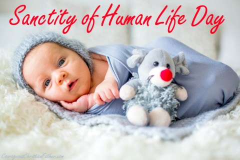 National Sanctity of Human Life Day is an observance declared by several United States Presidents who opposed abortion typically proclaimed on or near the anniversary of the Supreme Court's decision in Roe v. Wade. This day is also known as Pro-Life Day.