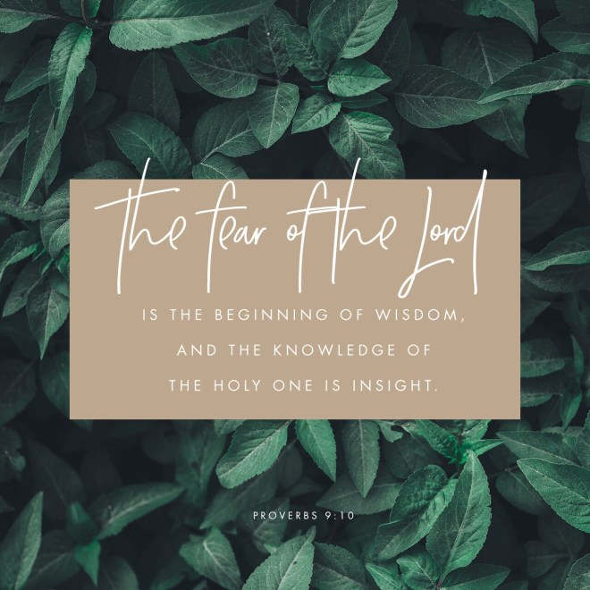 """VOTD May 26, 2019 """"The fear of the LORD is the beginning of wisdom, And the knowledge of the Holy One is understanding."""" PROVERBS 9:10 NASB"""