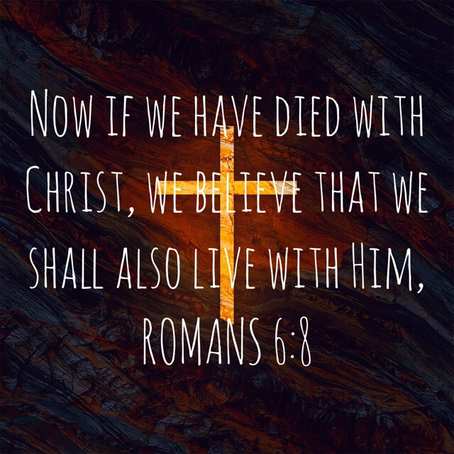 "VOTD June 8, 2019 ""Now if we have died with Christ, we believe that we shall also live with Him,"" ‭‭ROMANS‬ ‭6:8‬ ‭NASB‬‬"