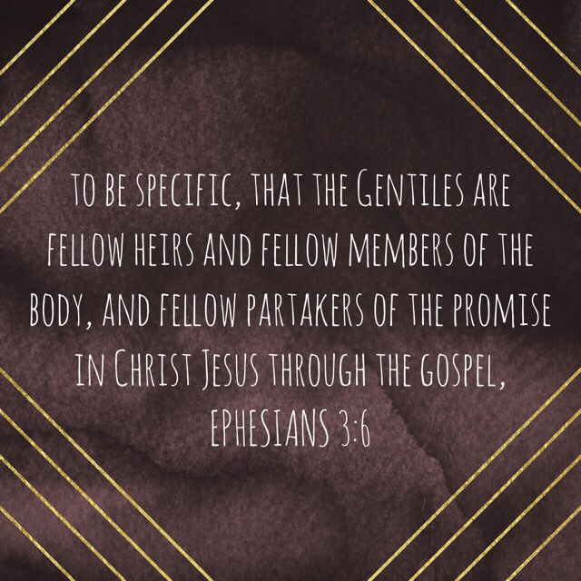 "VOTD June 9, 2019 ""to be specific, that the Gentiles are fellow heirs and fellow members of the body, and fellow partakers of the promise in Christ Jesus through the gospel,"" ‭‭EPHESIANS‬ ‭3:6‬ ‭NASB‬‬"