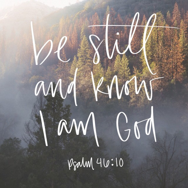"""VOTD June 18, 2019 """"Be still, and know that I am God: I will be exalted among the heathen, I will be exalted in the earth."""" Psalms 46:10 KJV"""