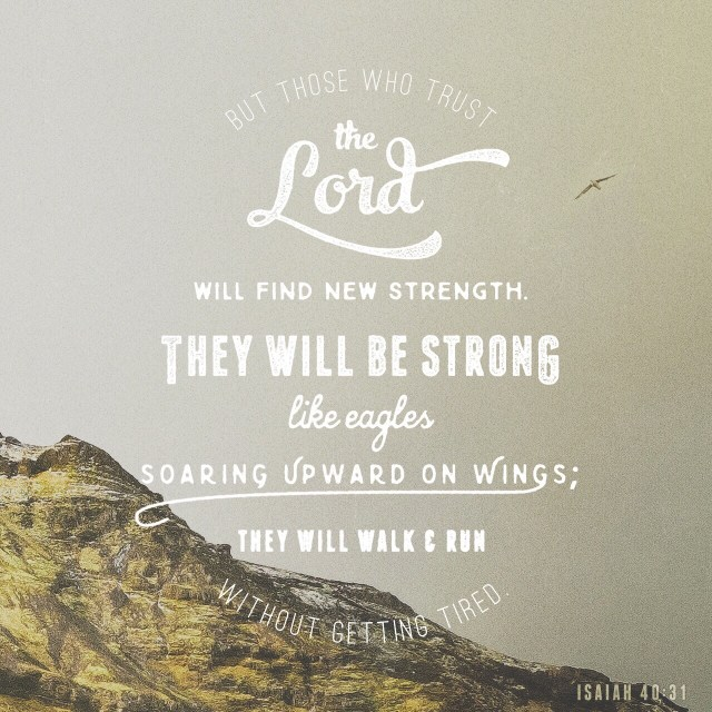 "VOTD June 20, 2019 ""Yet those who wait for the LORD Will gain new strength; They will mount up with wings like eagles, They will run and not get tired, They will walk and not become weary."" ‭‭ISAIAH‬ ‭40:31‬ ‭NASB‬‬"