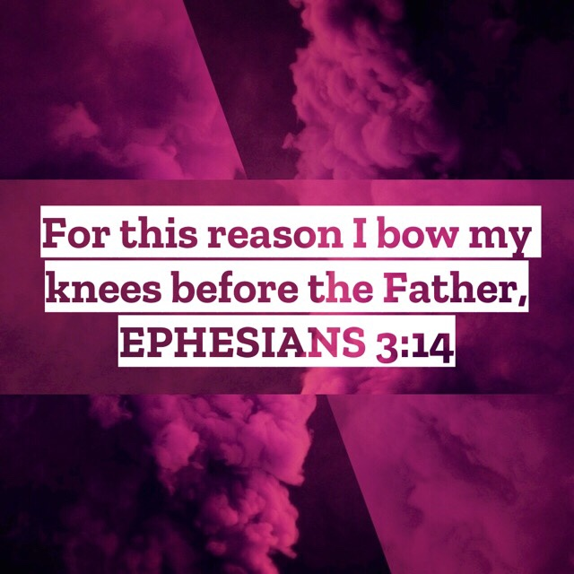 VOTD July 7, 2019 - For this reason I bow my knees before the Father, EPHESIANS 3:14 NASB