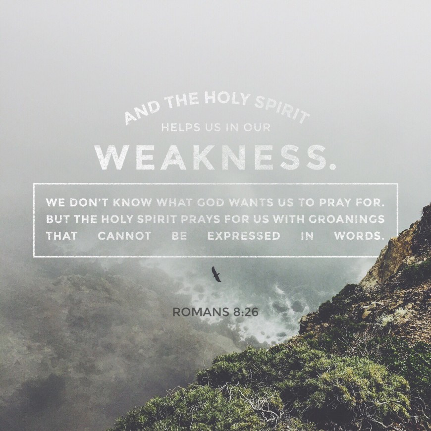 VOTD July 16, 2019 - In the same way the Spirit also helps our weakness; for we do not know how to pray as we should, but the Spirit Himself intercedes for us with groanings too deep for words; ROMANS‬ ‭8:26‬ ‭NASB‬‬
