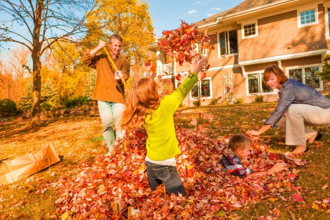 Interesting facts about fall - Weather is often the first indicator that the seasons are changing. For many people across the globe, the hot days of summer will soon be giving way to the more crisp days of fall.