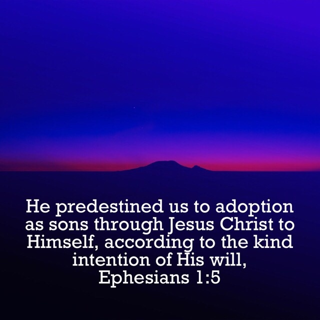 VOTD September 16 - He predestined us to adoption as sons through Jesus Christ to Himself, according to the kind intention of His will. Ephesians 1:5 NASB