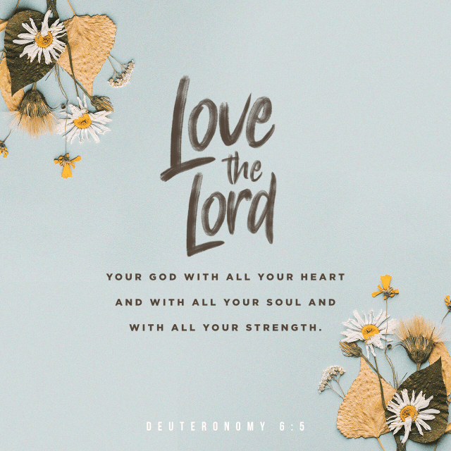"""VOTD October 8 - """"You shall love the LORD your God with all your heart and with all your soul and with all your might.""""  Deuteronomy 6:5 NASB"""