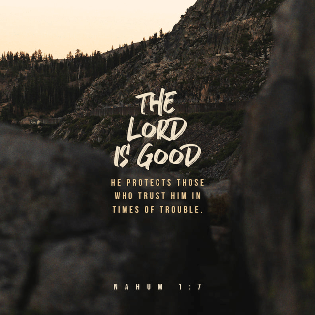 """VOTD January 1 -""""The LORD is good, A stronghold in the day of trouble, And He knows those who take refuge in Him."""" Nahum 1:7 NASB"""