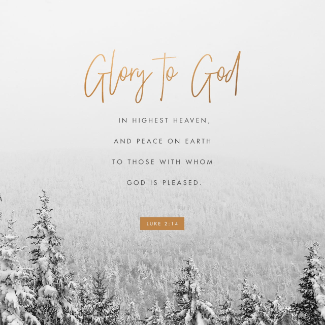 """""""Glory to God in the highest, And on earth peace among men with whom He is pleased.""""Luke 2:14 NASB"""
