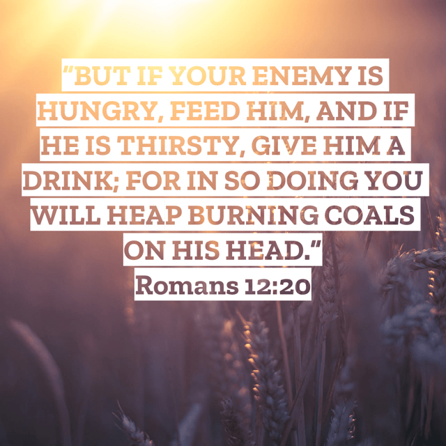 "VOTD March 1 - """"BUT IF YOUR ENEMY IS HUNGRY, FEED HIM, AND IF HE IS THIRSTY, GIVE HIM A DRINK; FOR IN SO DOING YOU WILL HEAP BURNING COALS ON HIS HEAD."""" ‭‭Romans‬ ‭12:20‬ ‭NASB‬‬"