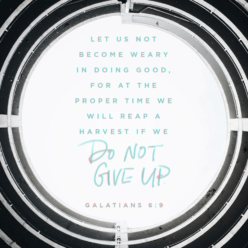 """VOTD April 4 - """"Let us not lose heart in doing good, for in due time we will reap if we do not grow weary."""" Galatians 6:9 NASB"""