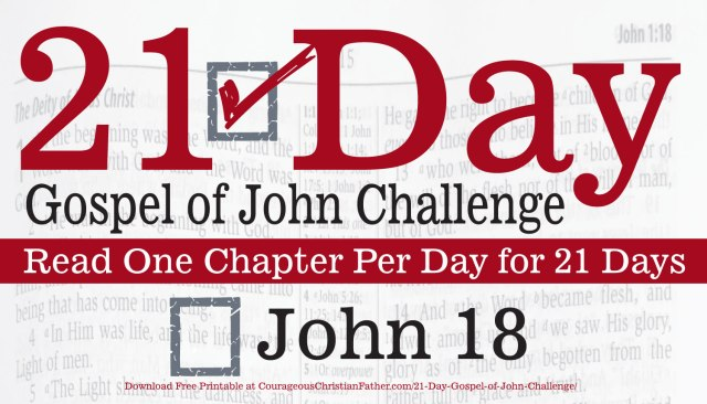 John 18 - Today is Day 18 of the 21 Day Gospel of John Challenge. Read Chapter 18 of the Gospel of John. #John18 #BGBG2