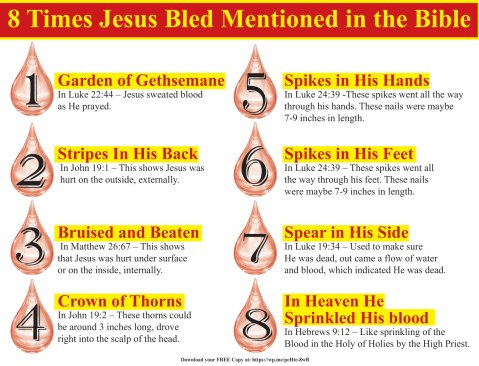 8 Times Jesus bled mentioned in the Bible - Did you know there are eight times mentioned in the Bible where Jesus shed his blood.