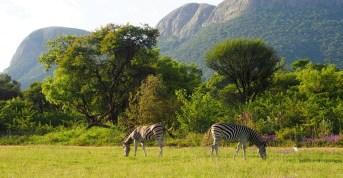 Lac Hartbeespoort, Afrique du Sud