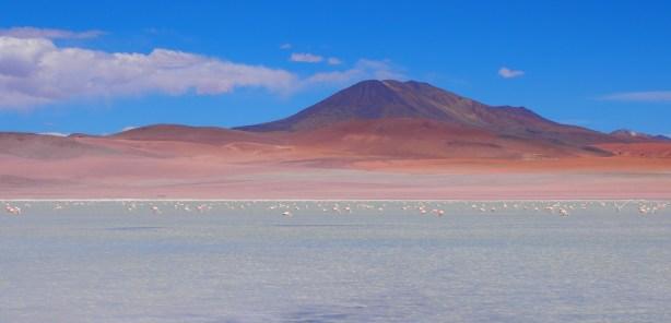 Laguna, sud lipez, Bolivie